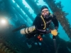 Shady El Dimshawy - Instructor, Oceans Divers
